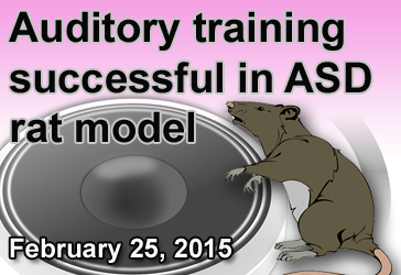 2015_02_auditory training