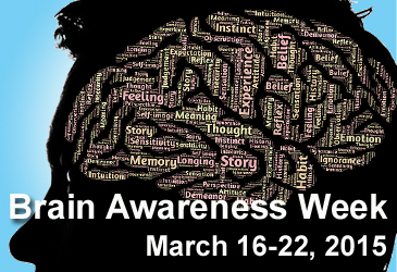 Brain Awareness Week 2015